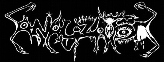 Analizator - Logo