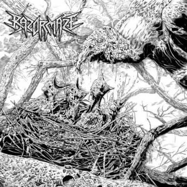 Razormaze - Spawnsong