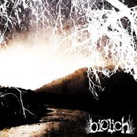 Biolich - Promo 2004