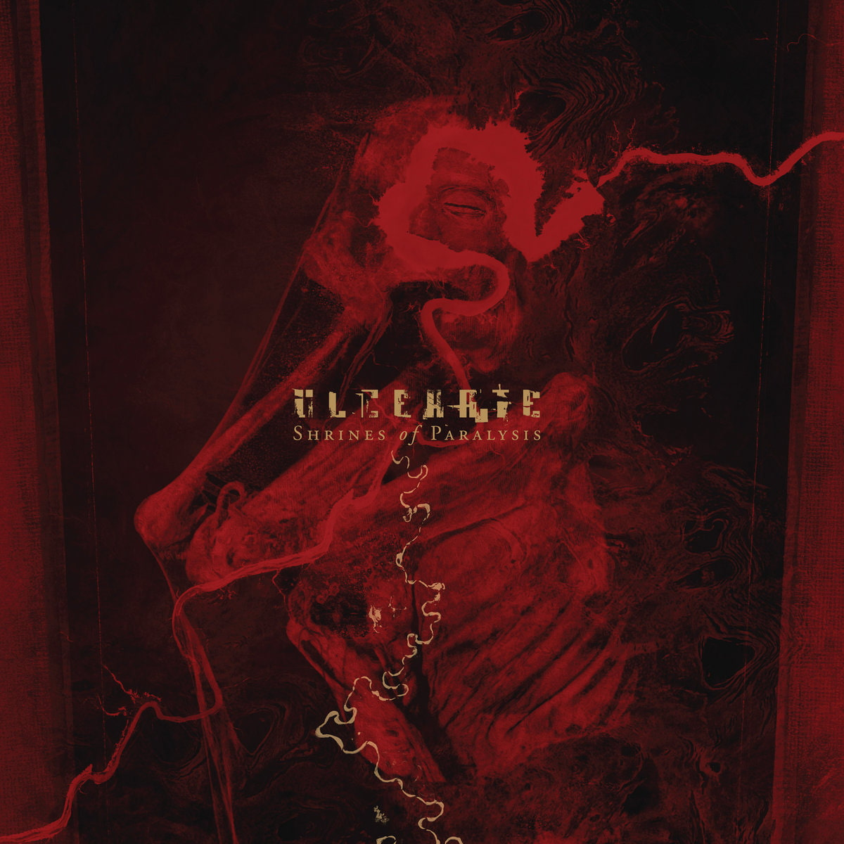 """Ulcerate—Shrines"