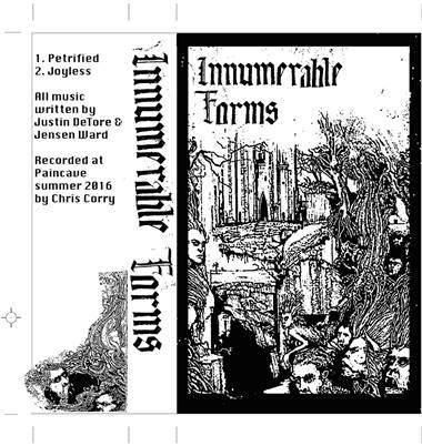 Innumerable Forms - Promo 2016