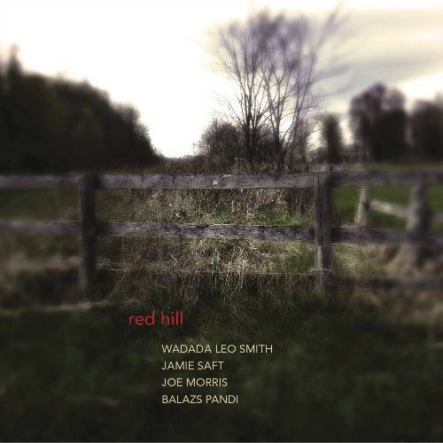 Jamie Saft - Red Hill