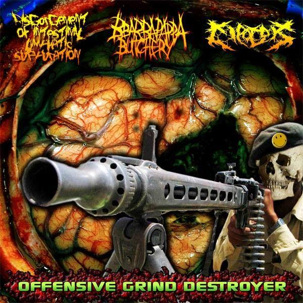 Disgorgement of Intestinal Lymphatic Suppuration / Cipotok - Offensive Grind Destroyer