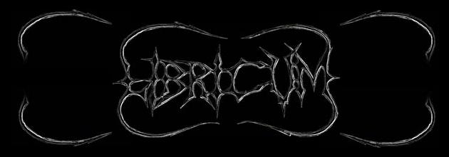 Libricum - Logo
