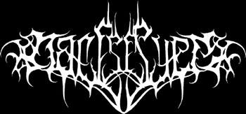 Nattstrype - Logo