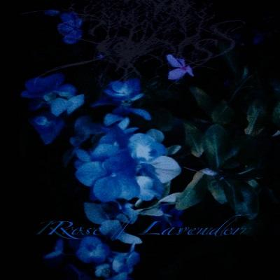 Sadness - Rose / Lavender