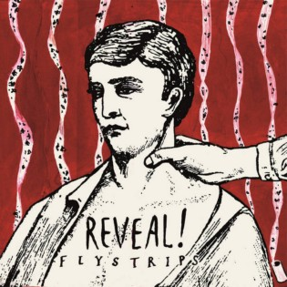Reveal! - Flystrips