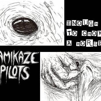 Kamikaze Pilots - Enough to Choke a Horse