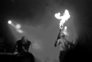 Nachtfalke Band