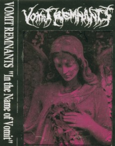 Vomit Remnants - In the Name of Vomit