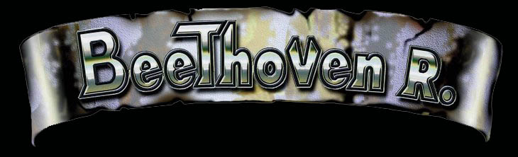 Beethoven R. - Logo