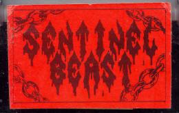 Sentinel Beast - Kill the Witch