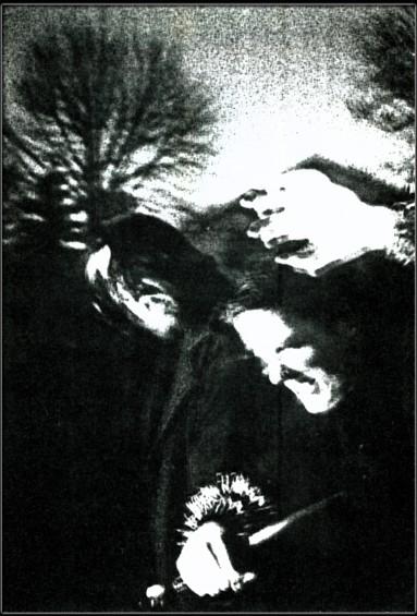 Erasmus - Photo