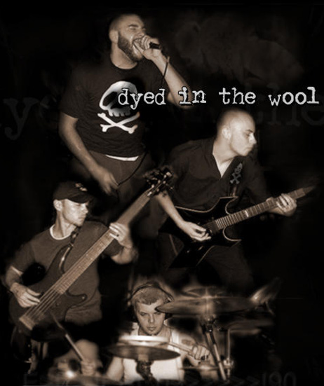 Dyed in the Wool - Photo