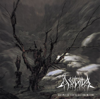 Akrival - Enigmas of the Contradictory Nature