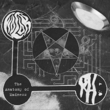 Wolok / Rotting Heaven - The Anatomy of Madness