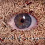 Womb of Maggots - Womb of Maggots