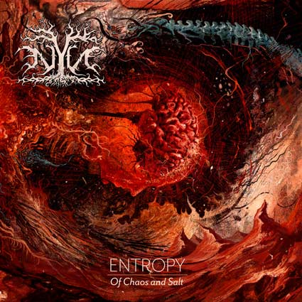 NYN - Entropy: Of Chaos and Salt