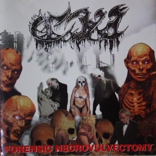 C.V.I. - Forensic Necrovulvectomy