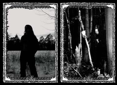 Wald Geist Winter - Photo
