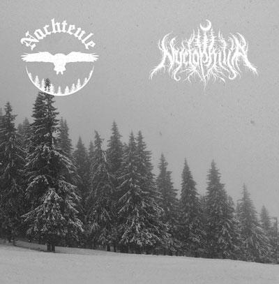 Nyctophilia / Nachteule - Errance hivernale / Gdzie noc jest najczarniejsza