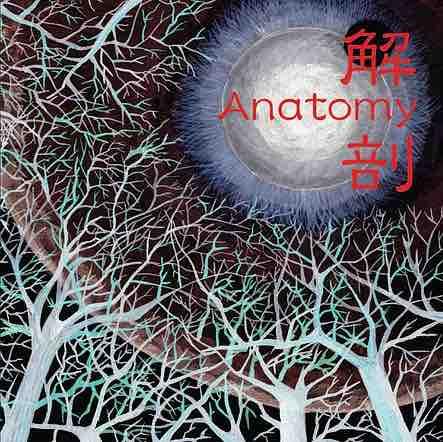 Anatomy - KAIBOU - 解剖