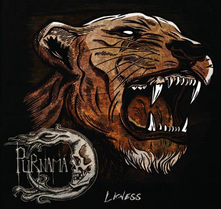 Purnama - Lioness