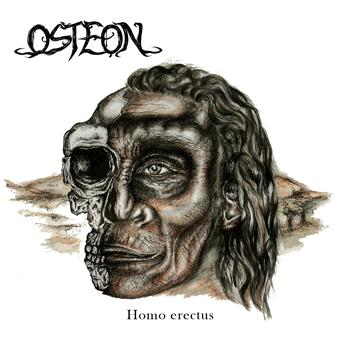 Osteon - Homo erectus