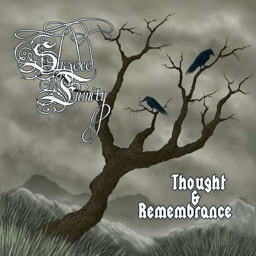 Shaded Enmity - Thought & Remembrance