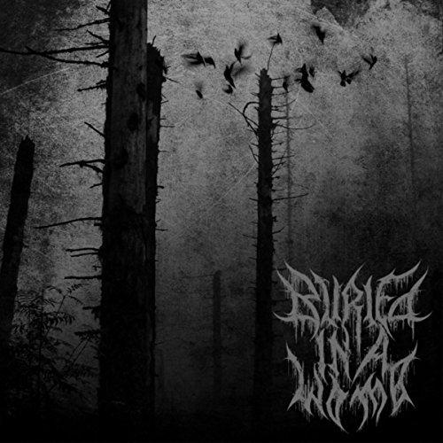 Buried in a Womb - Prenatal Suicide