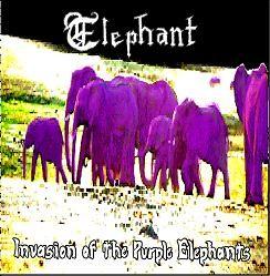 Elephant - Invasion of the Purple Elephants