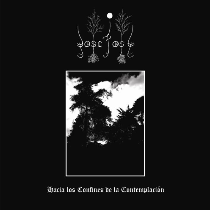 Bosc Fosc - Hacia los confines de la contemplación