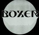 Boxer - Logo