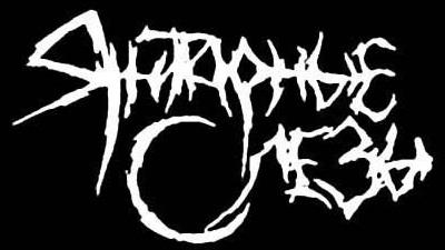 Янтарные Слёзы - Logo