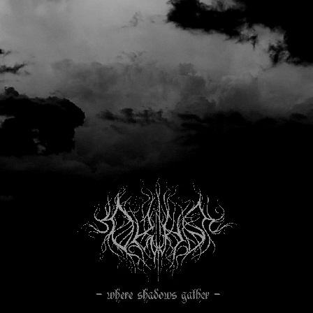 Ortus - Where Shadows Gather