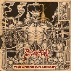 Schizophrenia - The Unknown Legacy