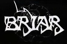 Briar - Logo