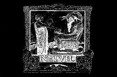 Netvil - Logo