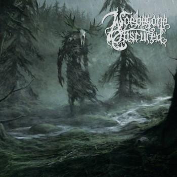 Woebegone Obscured - The Forestroamer