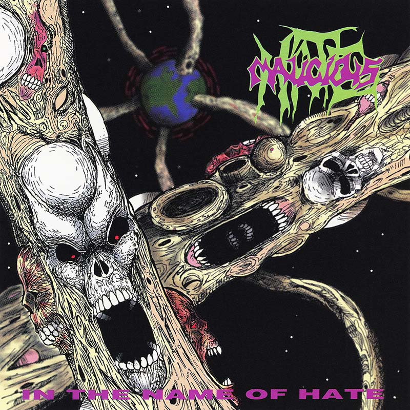 Malicious Hate - In the Name of Hate