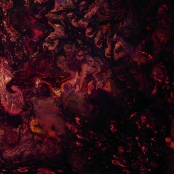 Plague Rider - Rhizome