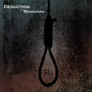Deduction of a Miscalculation - Fly