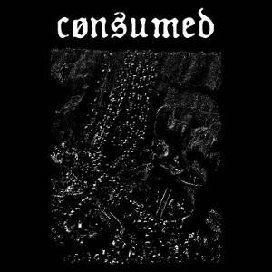 Consumed - Consumed