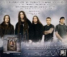 Shadows Fall - Inspiration on Demand