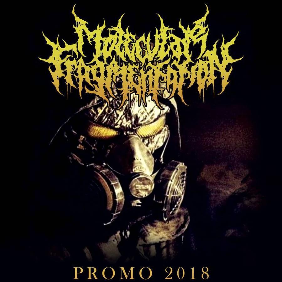 Molecular Fragmentation - Promo 2018
