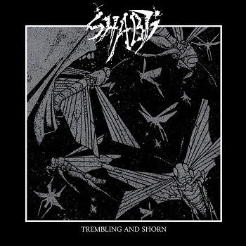 Shabti - Trembling and Shorn