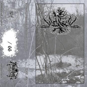 Waldseel - Visions of a Destructive Revelation