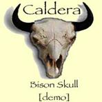 Caldera - Bison Skull