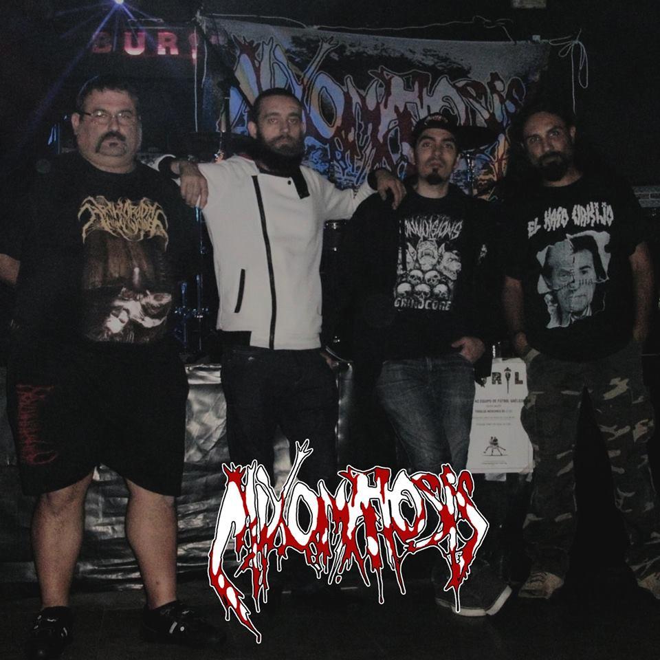 Mixomatosis - Photo