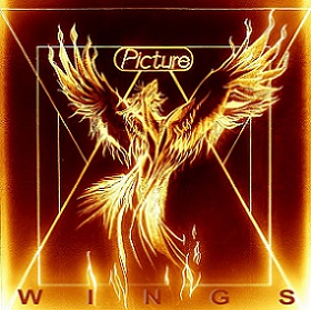 Picture - Wings